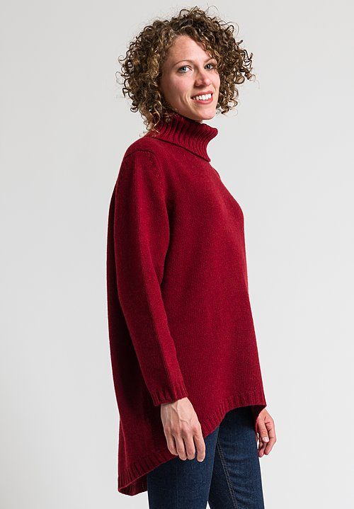 Hania Tatiana Turtleneck Sweater in Russet Red