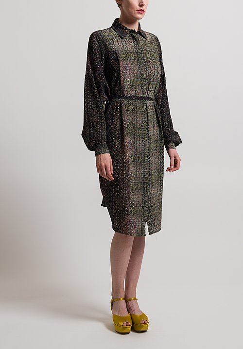 Anntian Silk Long Sleeve Shirt Dress in Alt Print Q