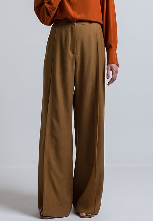 Agnona Long Panel Pleat Pants in Brown