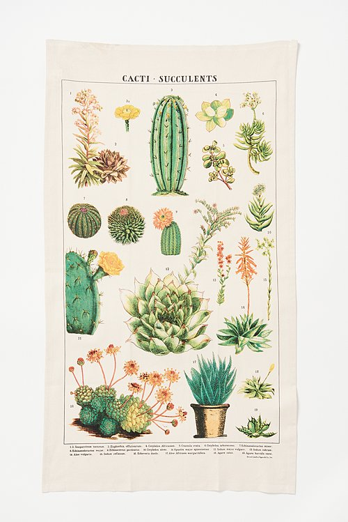 Natural Cotton Succulent Print Tea Towel