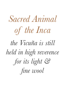 Sacred Animal of the Inca, the Vicuña is still held in high reverence for its light & fine wool | Santa Fe Dry Goods & Workshop