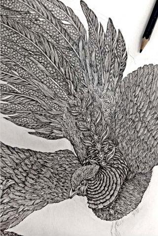 Sabina Savage Fall/Winter 2017 Pheasant Tree Scarf Drawing Process | Santa Fe Dry Goods & Workshop