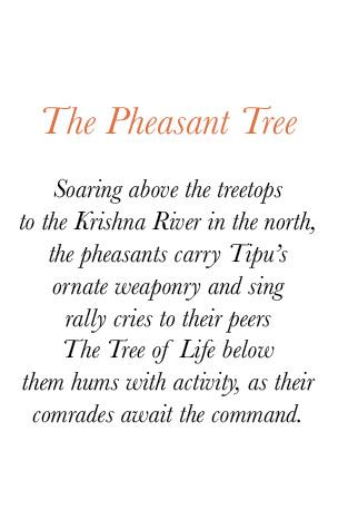 Sabina Savage Fall/Winter 2017 Pheasant Tree Story | Santa Fe Dry Goods & Workshop