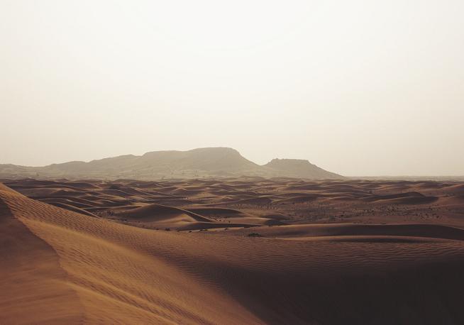 Wadi Rum Desert Landscape | Nicholas K Nature Walk Mosaic | Santa Fe Dry Goods & Workshop